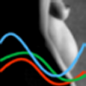 Biorythmes et grossesse