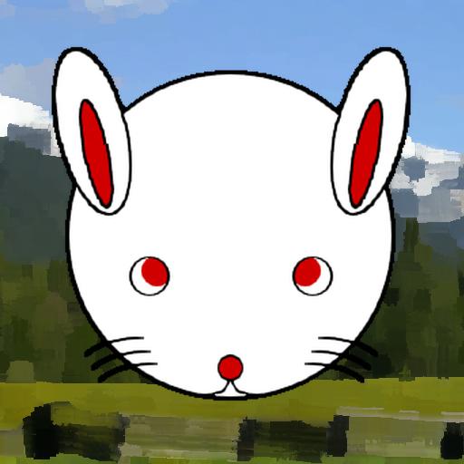 RabbitTouch