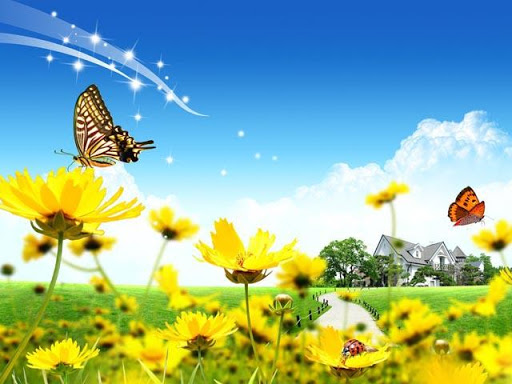 Butterfly Spring II Wallpapers