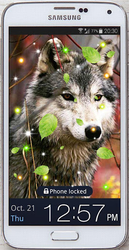 Wolves Photo HQ live wallpaper