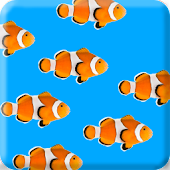 Fish School Wallpaper Free