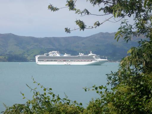 Sapphire-Princess-Akaroa-New-Zealand - Sapphire Princess in Akaroa Harbour, New Zealand.