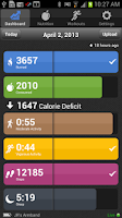 Screenshot of BodyMedia FIT