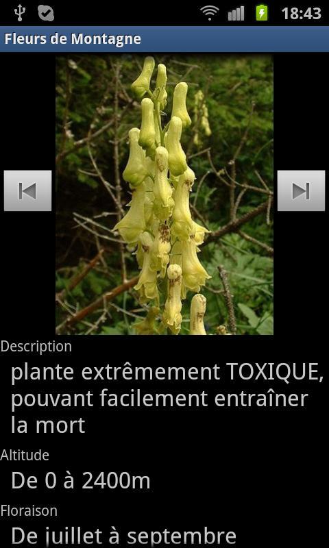 Fleurs De Montagne- screenshot