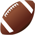 TS-NFL icon