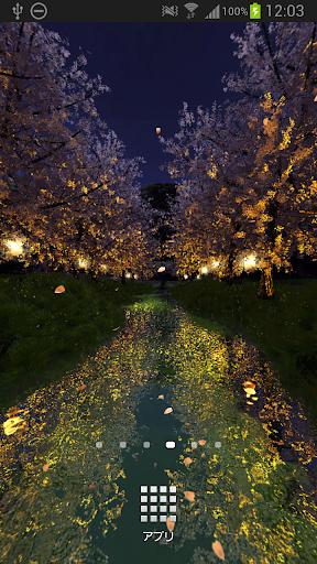 小川の夜桜☆パノラマライブ壁紙