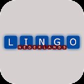 Lingo - NL