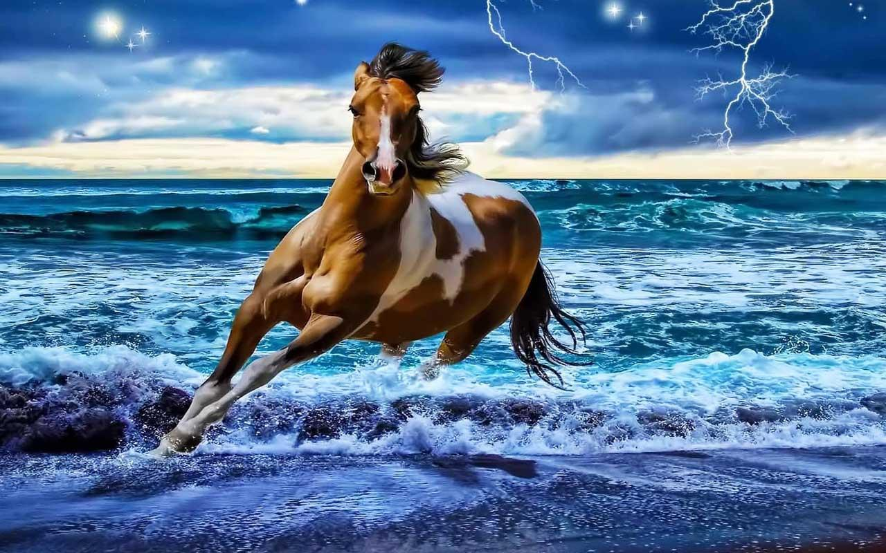 Horse Wallpaper Android Apps on Google Play