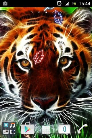 老虎動畫壁紙