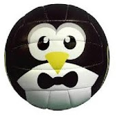 Penguin Ball
