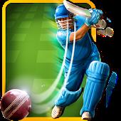 Cricket Batting Challenge 2014