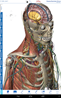 Screenshot of Human Anatomy Atlas for Lilly
