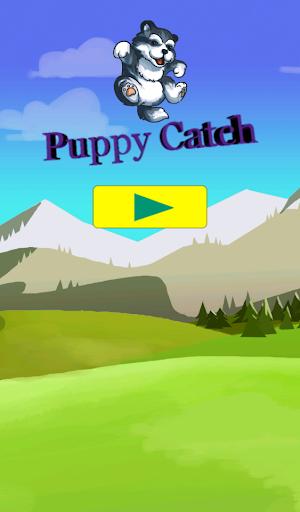Puppy Catch