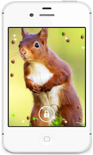 Squirrel Collection HD LWP