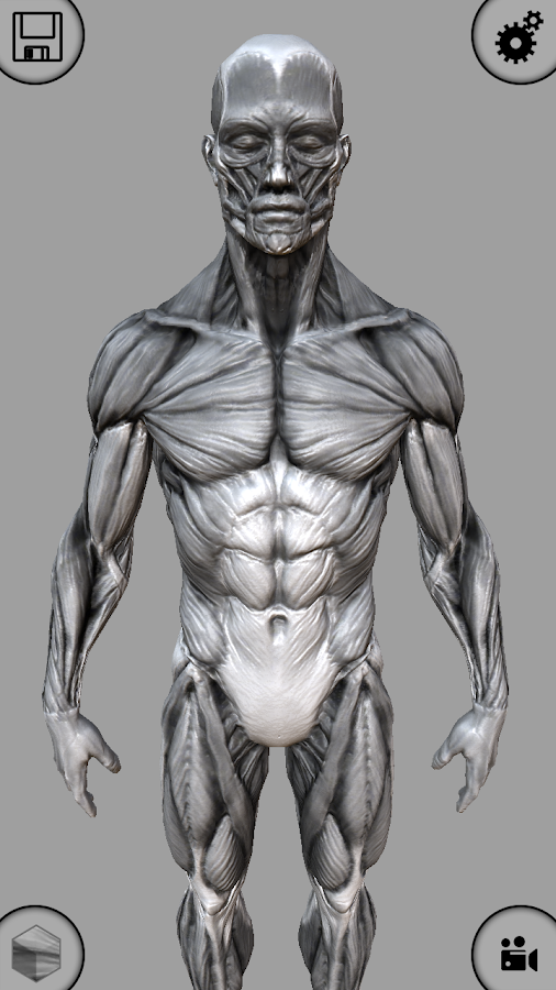 MARA3D Human Anatomy Lite- screenshot