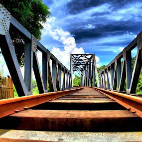 A worm's view of a railway bridge by Blue Bell Bantigue - Buildings & Architecture Bridges & Suspended Structures