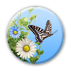 Mariposas icon