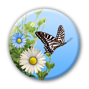 butterfly android apps on google play