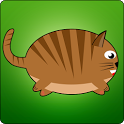 Jumpy Tabby icon
