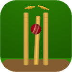 Bowled - Cricket Game 1.9 Apk
