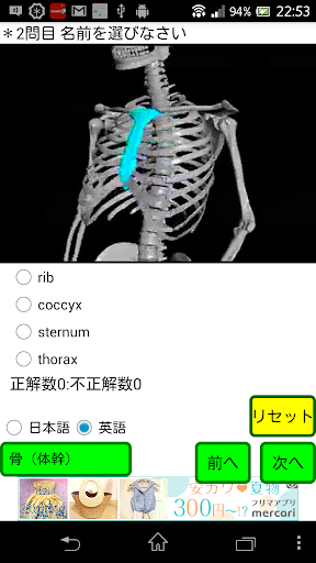無料医疗Appのクイズ「解剖くん」 記事Game