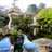 Tea Garden Live Wallpaper