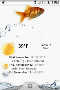 Weather forecast widget- screenshot thumbnail