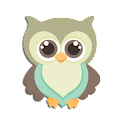Go Launcher Themes: Hoot