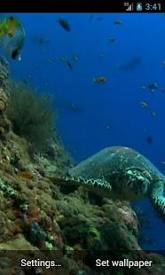 Sea Turtle. Live wallpaper.- screenshot thumbnail
