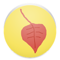 Japanese autumn leaves icon