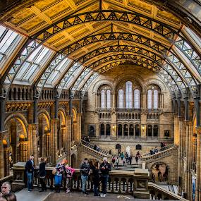 London museum by Suciu Corina - Buildings & Architecture Public & Historical ( uk, london, architecture, museum, people,  )