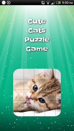 Cute Cat Sliding Puzzle