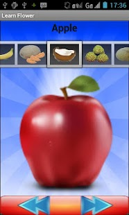 Fruit Quiz - screenshot thumbnail
