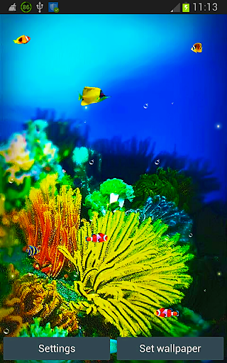 Galaxy S5 Fish Reef Wallpapers