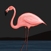 Flamingo Theme GO Launcher EX
