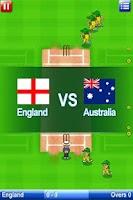 Screenshot of Big Cup Cricket Free