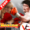 3D boxing game icon