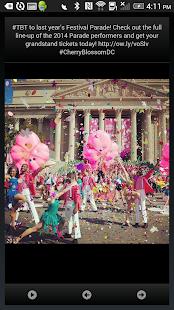 National Cherry Blossom Fest- screenshot thumbnail