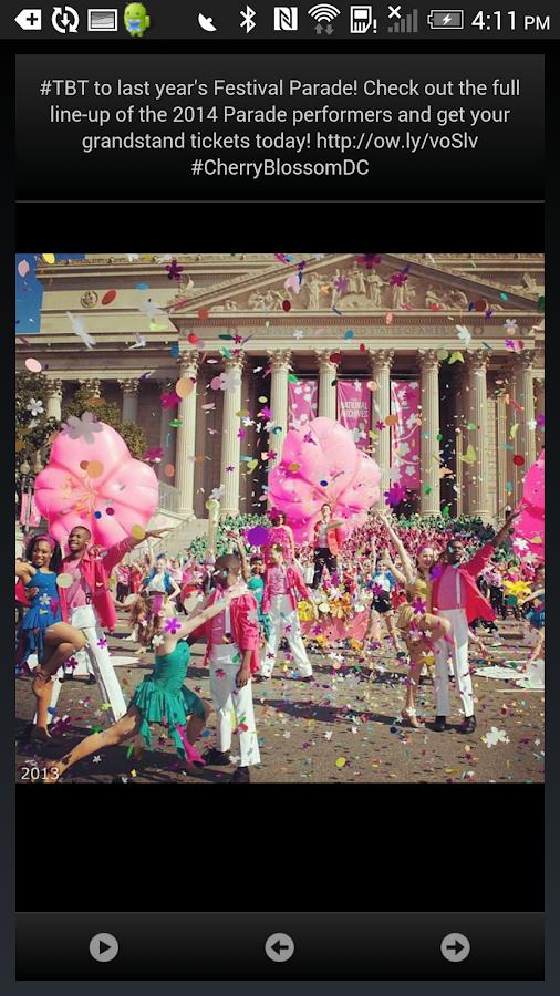 National Cherry Blossom Fest- screenshot