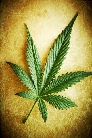 Marijuana Wallpaper - screenshot