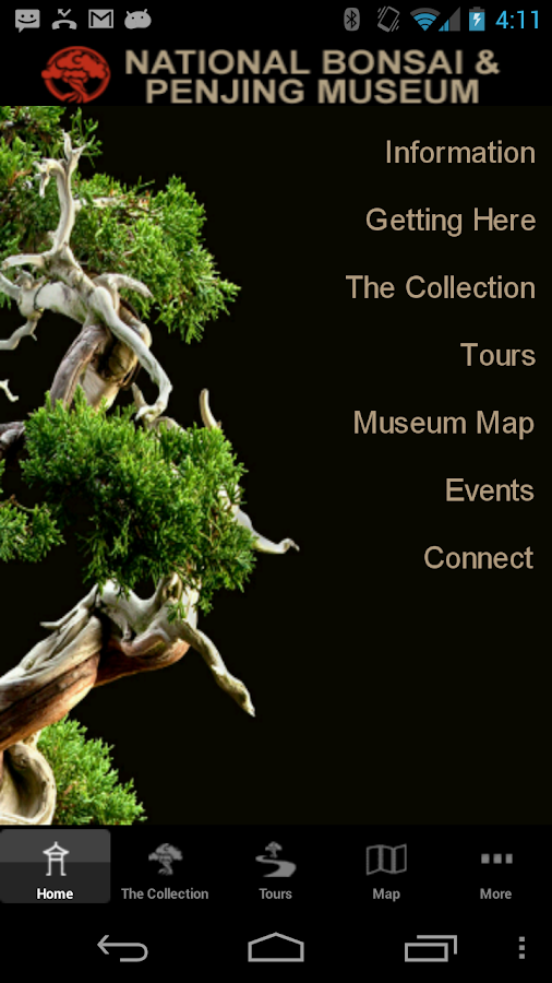 Nat. Bonsai & Penjing Museum- screenshot