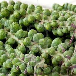 Simple Brussel Sprouts