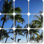 Photo Tiles Live Wallpaper