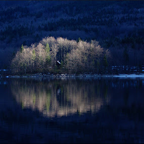 Island in the Sun by Matevz Skerget - Landscapes Waterscapes ( water, reflection, sun ray, blue, sunshine, lake, bohinj, island )