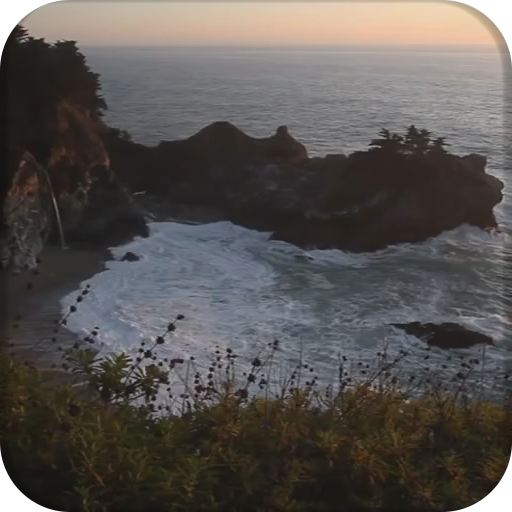 Paradise Sunset LOGO-APP點子