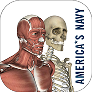 Anatomy Study Guide for Android