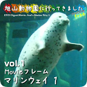 Animal video [Seal]  tusk.jp icon