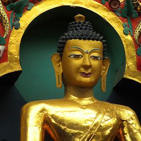 Buddha by Chirag Gupta - Artistic Objects Still Life ( golden temple, monks, mysore, buddhist, monastry, namdroling, worship, buddha,  )