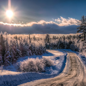 by G. Stetson - Landscapes Forests ( landscapes, maine, snow scene, light, snow, earth,  )