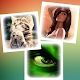 Avatars for contacts
